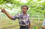 大学生村官项龙的创业路:小瓜蒌的大未来