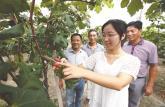 安徽省大学生村官五比五争先活动成绩单