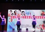 珍爱生命阳光生活合肥市2015年防艾禁毒高校文艺巡演在合肥学院举办