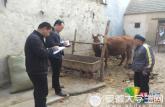 安徽蕭縣大學生村官入戶走訪助力精準扶貧