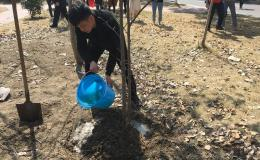 合肥滨湖职业技术学院组织开展了关于爱护树木从我做起,认领我的一颗小树植树活动