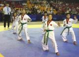 2018年跆协杯淮北市首届大众跆拳道锦标赛