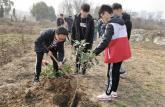 巢湖学院信息工程学院青协顺利举办植树岁月 伴世长青植树活动