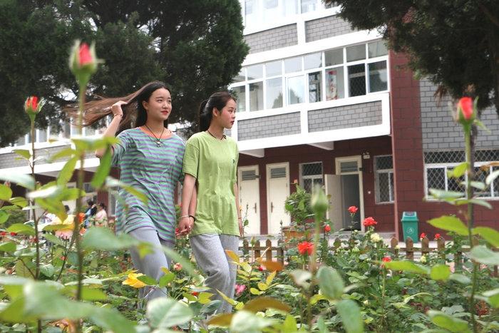 """中国十大名花有其一:走进亳州工业学校尽享""""花中皇后""""阳光雨露的滋润"""