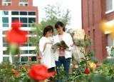 中国十大名花有其一:走进亳州工业学校尽享花中皇后阳光雨露的滋润