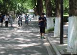 玩手机忘记考试校园低头族惹人忧 部分省份禁止手机进入课堂