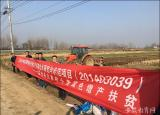 滁州学院扶贫种子助力帮扶村义和村脱贫