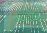 亳州中药科技学校学子习练五禽戏强身助战疫