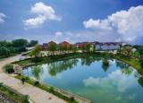 安徽大学生三下乡社会实践:望江县环境现状社会调查