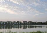 大学生暑期社会实践调研:定远县新农村与生态保护建设