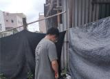 安徽工业大学暑期志愿者:倡导文明环保新气象