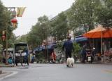 安徽师范大学:遗落在乡村的老人与狗
