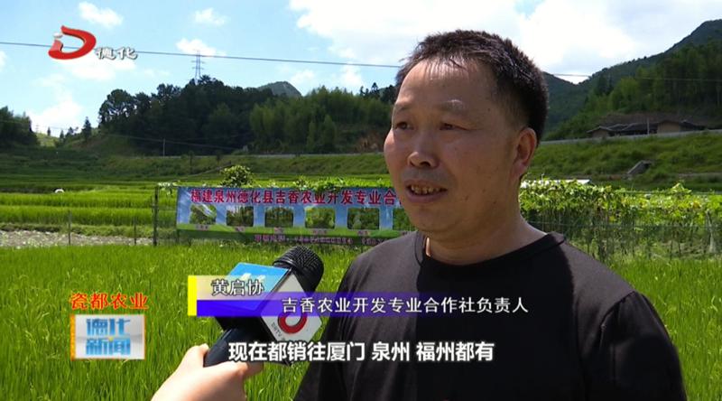 黄启协:打造土山农品牌,成为农村创业标杆