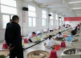 安庆大别山科技学校在全国手工制茶项目安徽省选拔赛中喜夺冠军