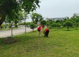 巢湖學院化材學院青年志愿者協會開展校園清掃活動