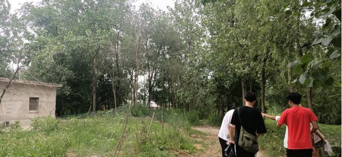 """安徽工程大学学子""""三下乡"""":走进乡间调查,振兴寿县农业"""