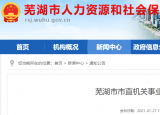 招35人!芜湖市市直机关事业单位招募就业见习人员