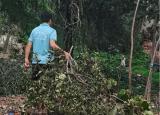 台风席卷后,方见人间情——合肥工业大学暑期社会实践活动