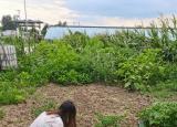 滁州学院学生实践活动:乡村建设,你我同心