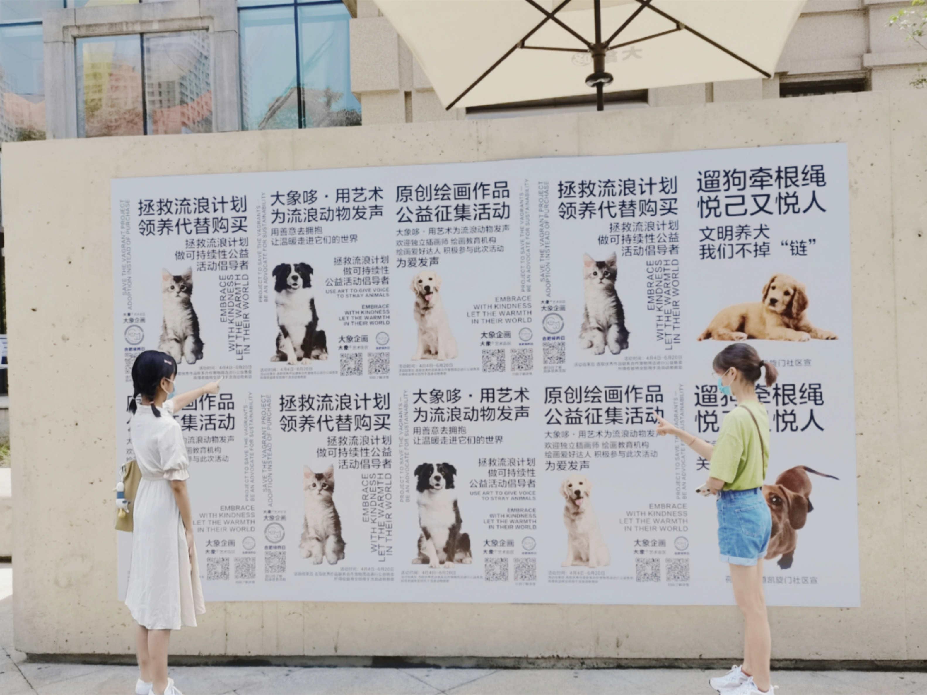 安徽學子三下鄉:走進日常生活,了解養犬知識