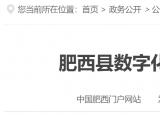 肥西县数字化建设发展有限责任公司招聘9人,9月17日报名截止