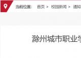 有编制!滁州城市职业学院招聘24人,9月24日截止