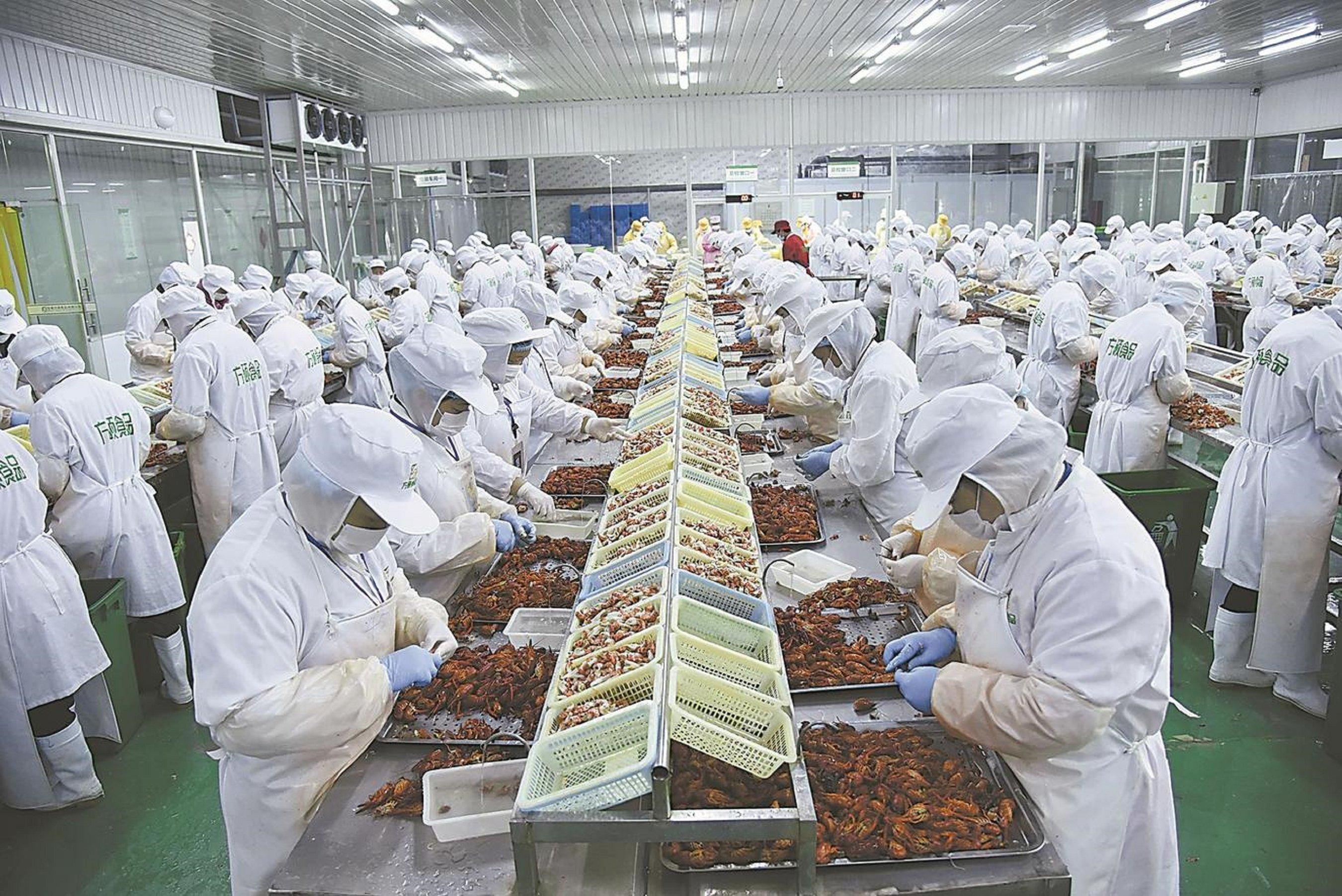 安农学子三下乡:走进长集现代产业园--融合驱动发展,出口拉动经济