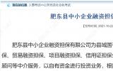 合肥一国企招聘7名工作人员,11月5日报名截止